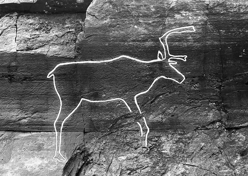 Bølareinen rock art